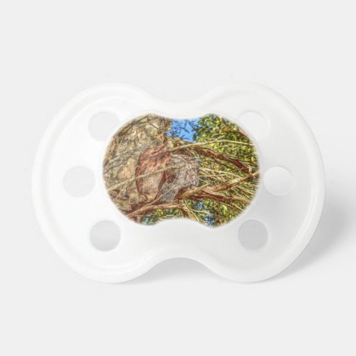 Baby Gifts Queensland : Tawny frogmouth rural queensland australia baby pacifier