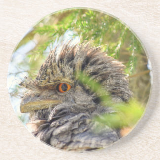 TAWNY FROGMOUTH RURAL QUEENSLAND AUSTRALIA BEVERAGE COASTER