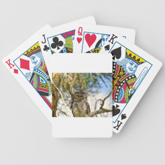 TAWNY FROGMOUTH RURAL QUEENSLAND AUSTRALIA BICYCLE PLAYING CARDS