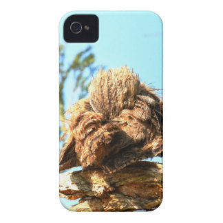 TAWNY FROGMOUTH RURAL QUEENSLAND AUSTRALIA Case-Mate iPhone 4 CASE