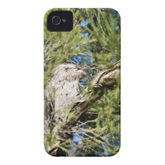 TAWNY FROGMOUTH RURAL QUEENSLAND AUSTRALIA Case-Mate iPhone 4 CASES