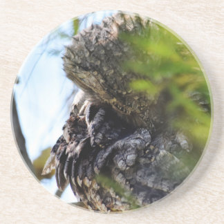 TAWNY FROGMOUTH RURAL QUEENSLAND AUSTRALIA DRINK COASTERS
