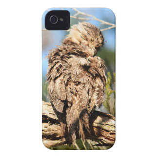 TAWNY FROGMOUTH RURAL QUEENSLAND AUSTRALIA iPhone 4 CASE