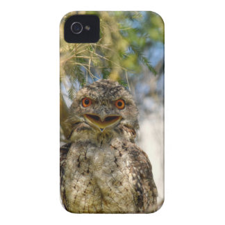 TAWNY FROGMOUTH RURAL QUEENSLAND AUSTRALIA iPhone 4 Case-Mate CASE