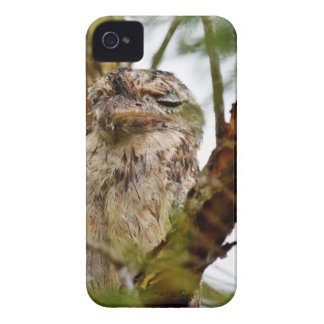 TAWNY FROGMOUTH RURAL QUEENSLAND AUSTRALIA iPhone 4 COVERS