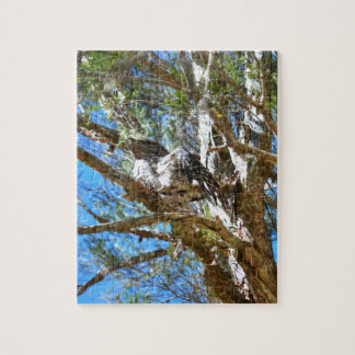 TAWNY FROGMOUTH RURAL QUEENSLAND AUSTRALIA JIGSAW PUZZLE
