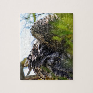 TAWNY FROGMOUTH RURAL QUEENSLAND AUSTRALIA PUZZLE
