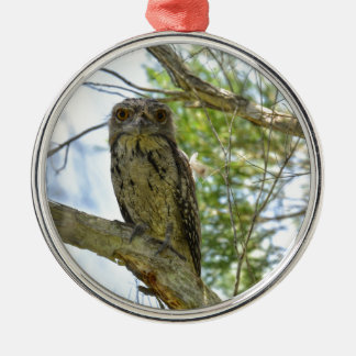 TAWNY FROGMOUTH RURAL QUEENSLAND AUSTRALIA Silver-Colored ROUND DECORATION