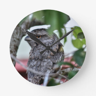 TAWNY FROGMOUTH RURAL QUEENSLAND AUSTRALIA WALL CLOCKS