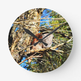 TAWNY FROGMOUTH WITH ART EFFECTS QUEENSLAND AUSTRA CLOCK