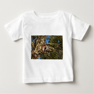 TAWNY FROGMOUTHS IN TREE QUEENSLAND AUSTRALIA SHIRT