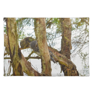 TAWNY FROGMOUTHS QUEENSLAND AUSTRALIA PLACEMAT