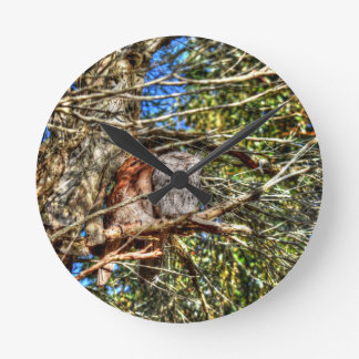 TAWNY FROGMOUTHS WITH ART EFFECTS AUSTRALIA CLOCKS