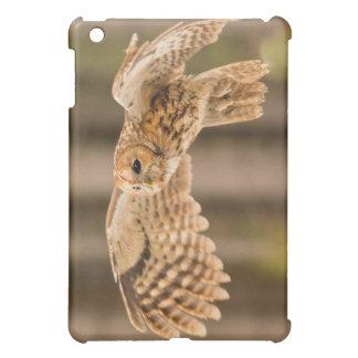 Tawny Owl iPad Mini Cover