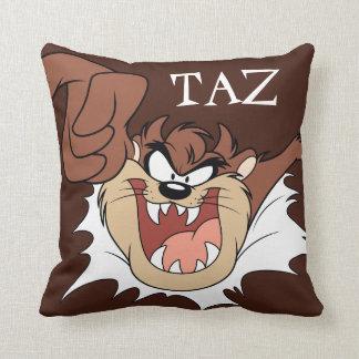 TAZ™ Bursting Through Page Cushion