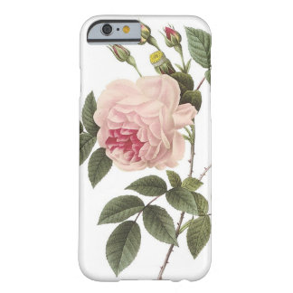 (TBA) Redoute Rose 2 Barely There iPhone 6 Case