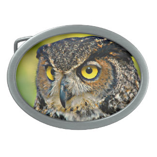 TCWC - Great Horned Owl Oval Belt Buckles