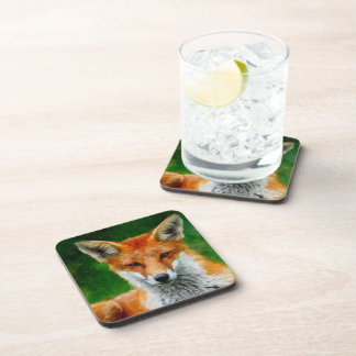 TCWC - Red Fox in Watercolor Beverage Coasters