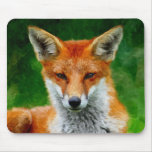 TCWC - Red Fox Watercolor Painting