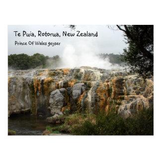 Te Puia, Rotorua, New Zealand Post Card