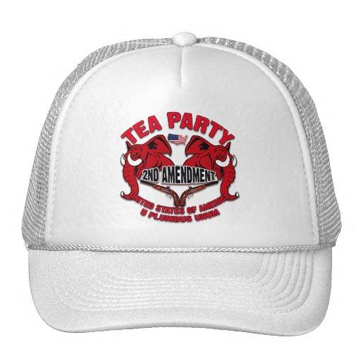 Tea Party 2nd Amendment Trucker Hats