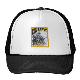 Tea Party Plea to Defend Mesh Hats