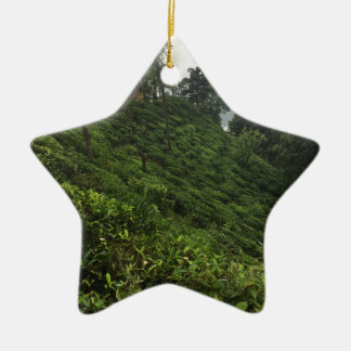 Tea Plantation Ceramic Ornament