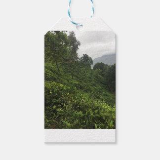 Tea Plantation Gift Tags