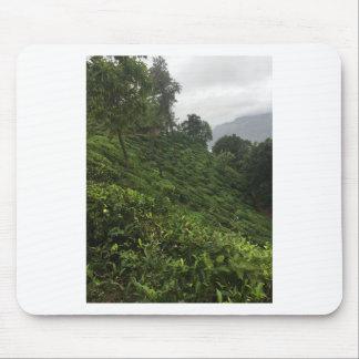 Tea Plantation Mouse Pad