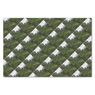 Tea Plantation Tissue Paper