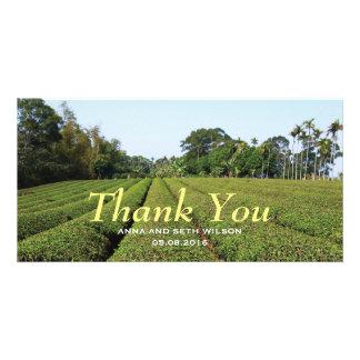 Tea Plantation View Thank You Photo Card