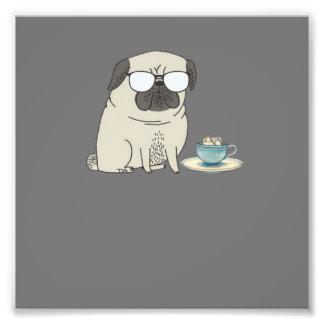 tea time Mr pug Photograph