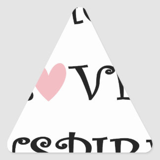 teach love inspire triangle sticker