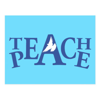Teach peace white dove quote postcard