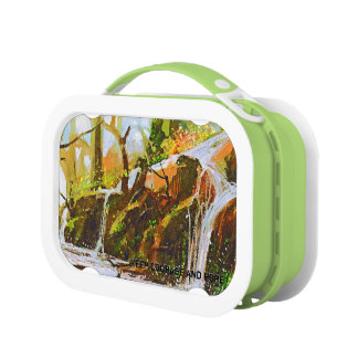 Teaches Me To Remain Stable In A Storm Lm Lunch Box