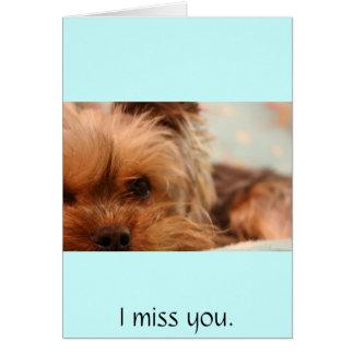 teacup yorkie puppy card
