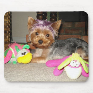 Teacup Yorkie Purple Princess Mouse Pad