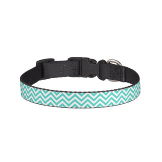 Teal Blue and White Zigzag Stripes Chevron Pattern Pet Collar