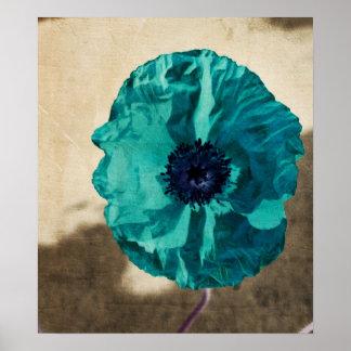 Teal Poppy Poster