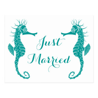 Teal Turquoise Just Married Seahorse Beach Wedding Postcard