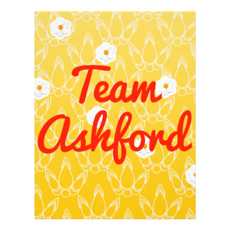 Team Ashford Flyer