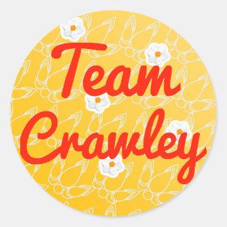 Team Crawley Stickers