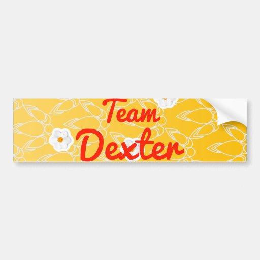 Team Dexter Bumper Sticker