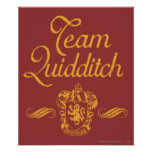 Team Quidditch Posters