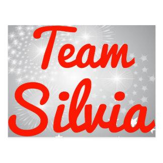 Team Silvia Post Cards