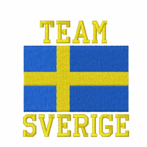 Team Sverige Embroidered Hooded Sweatshirt