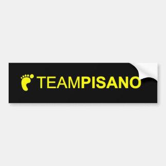 TeamPisano Bumper sticker