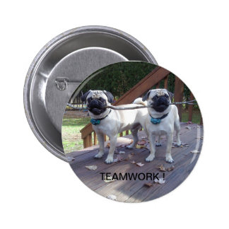 Teamwork pin! Pugs working together