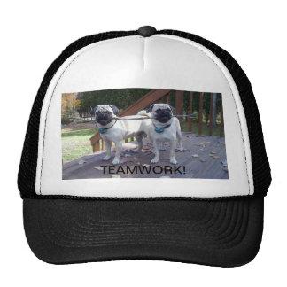 Teamwork trucker hat! Pugs working together!