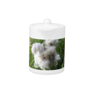 "Teapot English Angora Rabbit ""Bradley"""